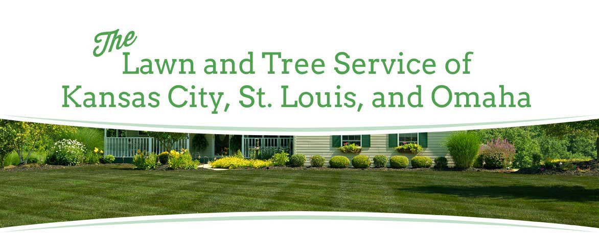 Lawn Care Service Kansas City St Louis Omaha