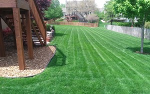 lawn care company kansas city example of our service06